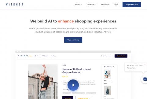 Visenze Web Design